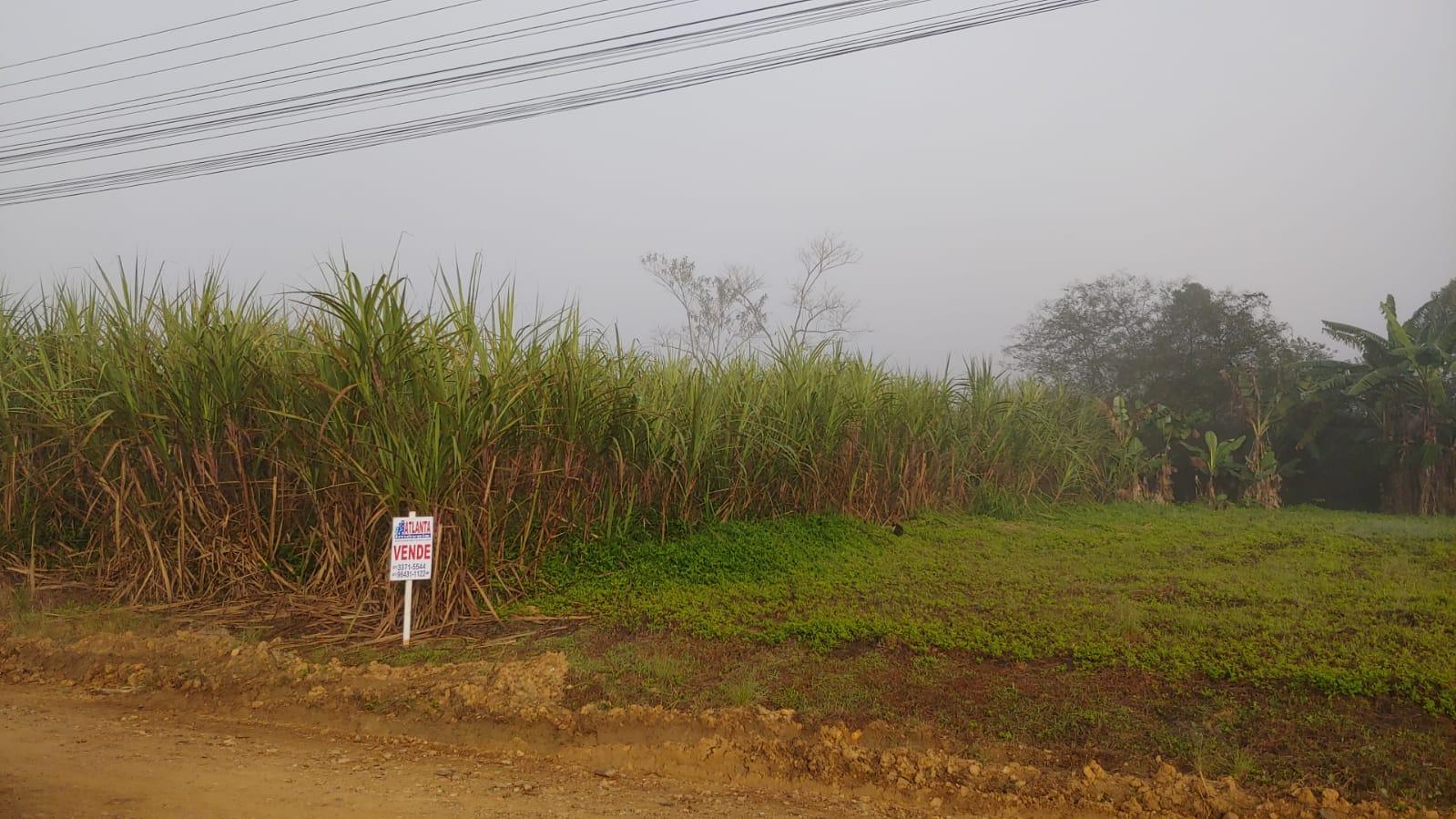 Terreno à venda em Jaraguá do Sul – cód. 3331
